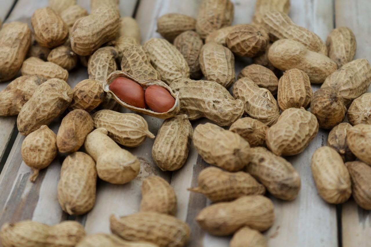 FDA Peanut Capsule