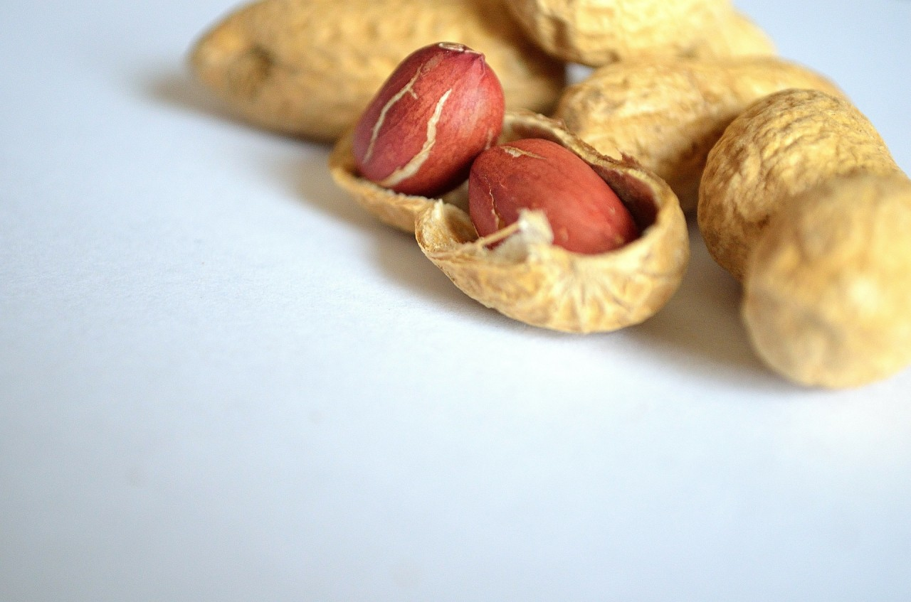 The Peanut Pill is Now FDA Approved